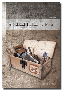 men's devotional on porn addiction A Biblical Toolbox for Purity